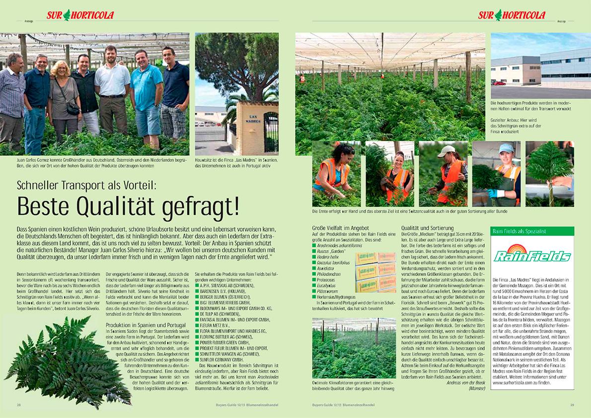 Sur Horticola Verdes Ornamentales